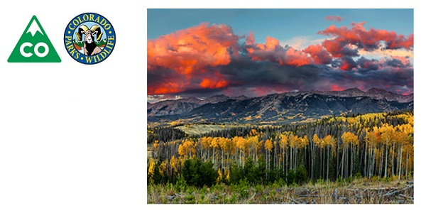 Fall Colors Prompt Gold Rush in Colorado