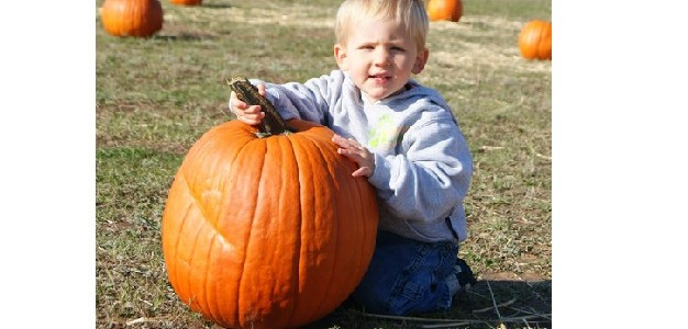 Military Weekend at the Pumpkin Patch