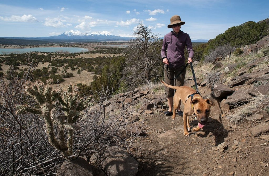 El Paso County New Park Leash Rules