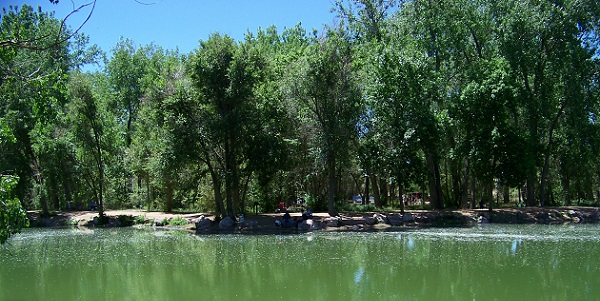 El Paso County Tests for Blue Green Algae
